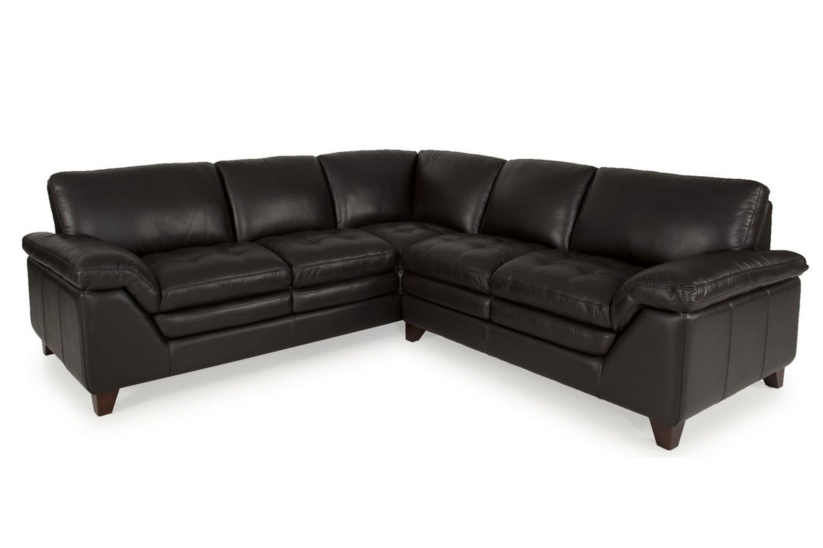Brazil Leather 2 Piece Sectional From Gardner White Furniture