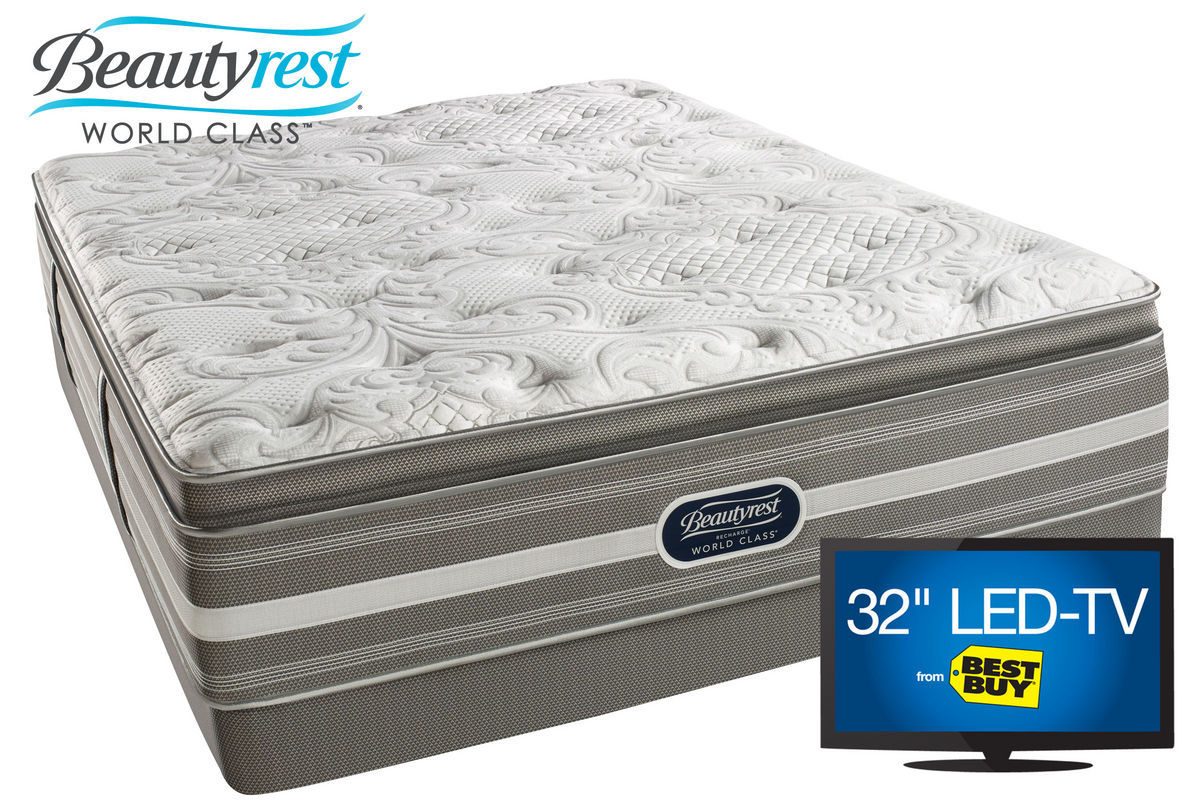 Beautyrest 174 Recharge 174 World Class 174 Jaelyn Plush Pillow