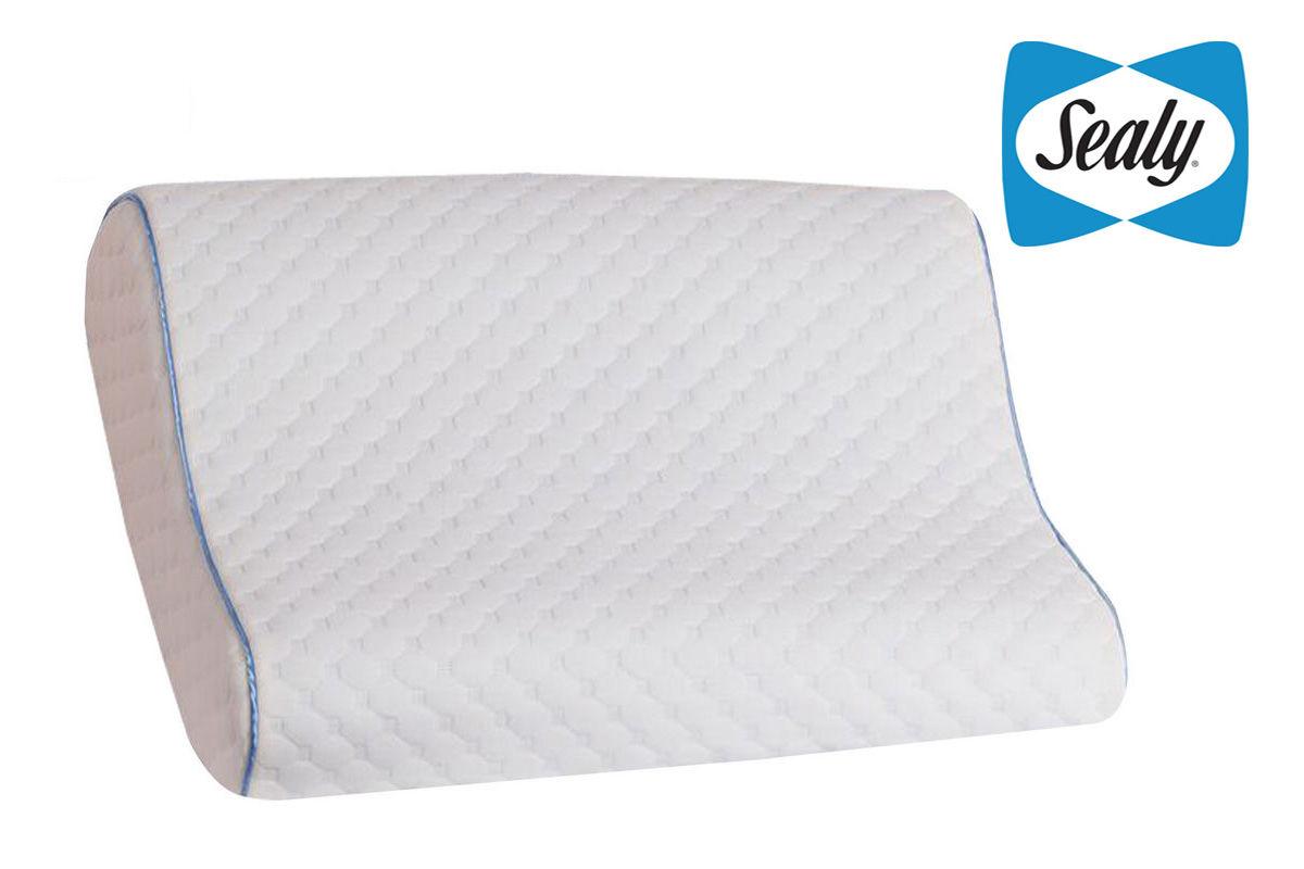 Sealy Memory Foam Standard Contour Pillow At Gardner White