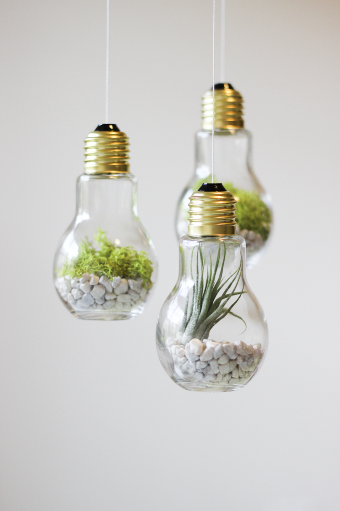DIY-Lightbulb-Terrariums-cladandcloth.com-2-682x1024